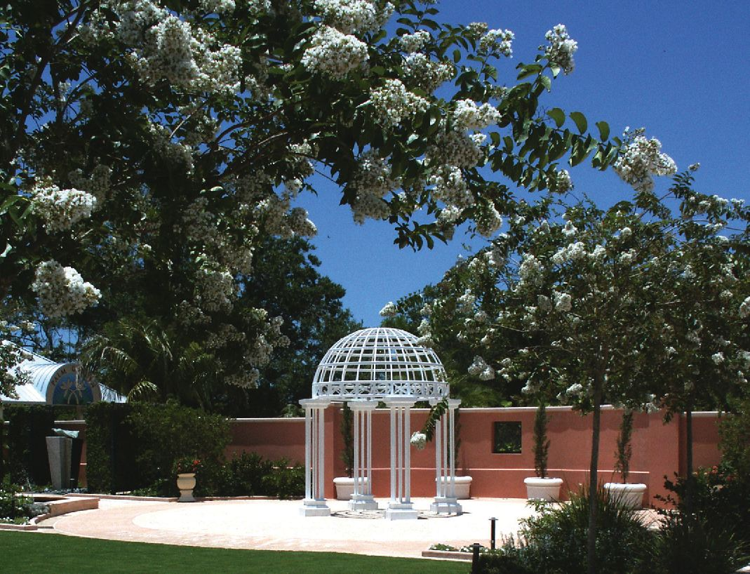 Paradise News Magazine S Registration Now Open For Clerk 11th Annual Valentine Day Group Wedding At Florida Botanical Gardens