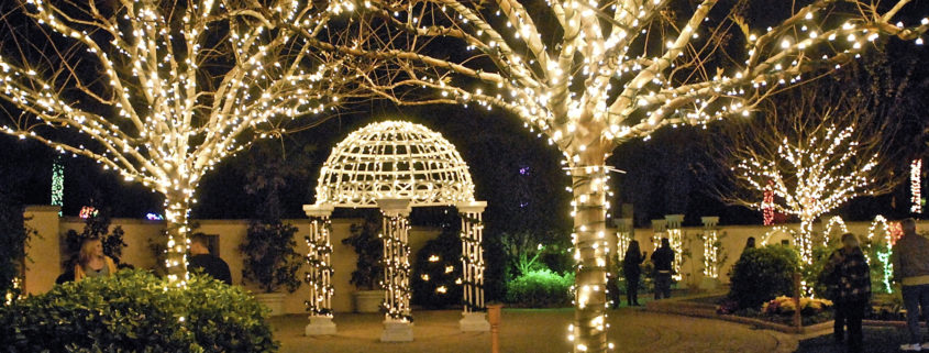 Largo Botanical Gardens Christmas Lights 2020 Paradise News Magazine | Holiday Lights in the Garden