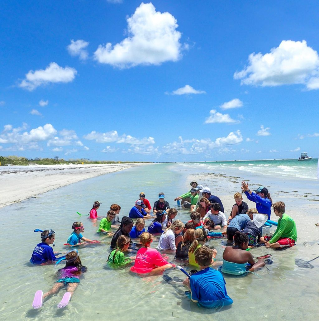 Summer Camp Directory For Tampa Clearwater St Petersburg: Help Kids Discover Tampa Bay With
